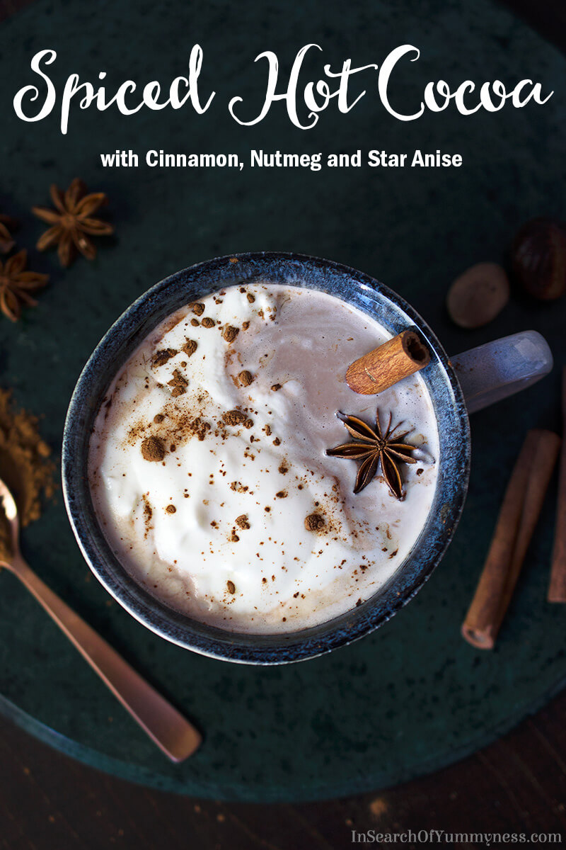 Spiced Hot Cocoa with cinnamon, nutmeg and star anise in a mug | InSearchOfYummyness.com