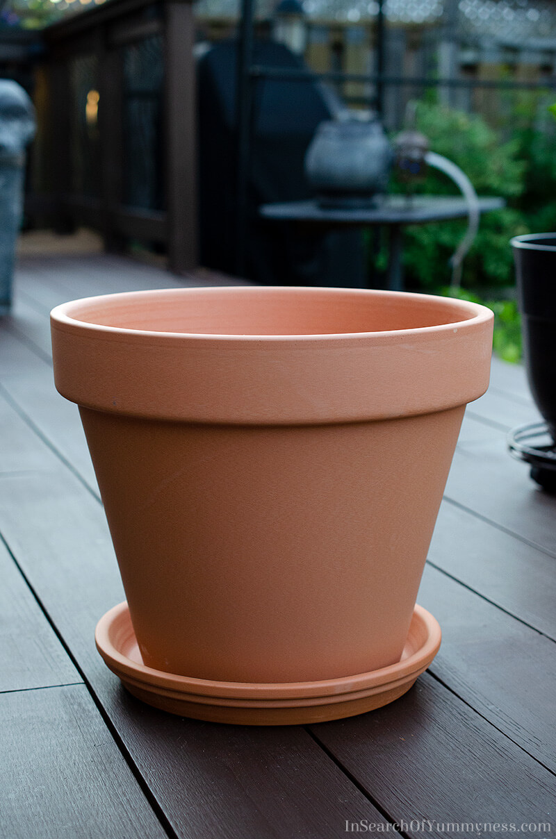 A large terracotta pot | InSearchOfYummyness.com